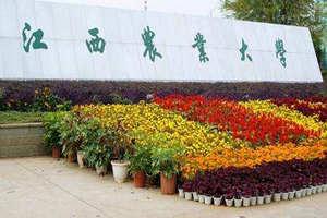 江西农业大学在职课程研修班