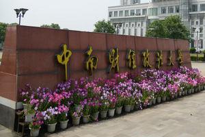 中南财经政法大学在职课程研修班