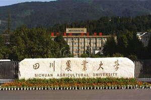 四川农业大学在职课程研修班
